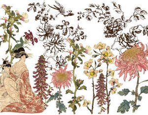 "IOD Decor Transfer ""Japonica"""