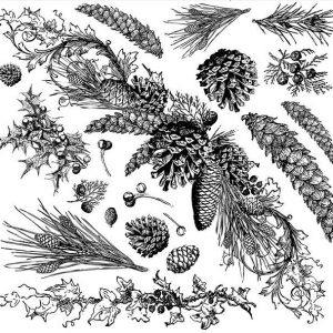 IOD Decor Stempel Evergreen