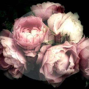 """Mint by Michelle Decoupage Papier """"Moody Florals"""""""