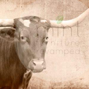 """Mint by Michelle Decoupage Papier """"Texas Longhorn"""""""