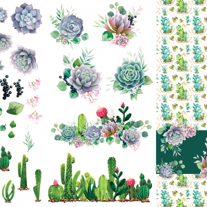 Belles & Whistles Transfer Cacti & Succulents 65.5 x 98 cm