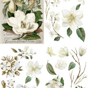 Belles & Whistles Transfer Magnolia Garden 64 x 81 cm