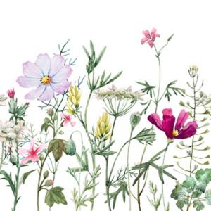 Belles & Whistles Decoupage Paper Spring Flowers with Stems 3 Blatt à 30 x 42cm