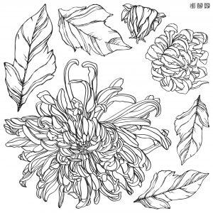 IOD Decor Stempel Chrysanthemum – 2er Set