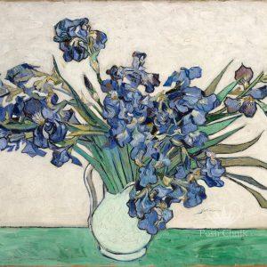 Posh Chalk Decoupage Irises in White