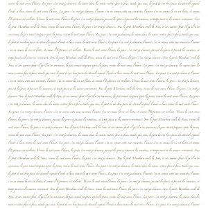 Posh Chalk Decoupage Posh Script