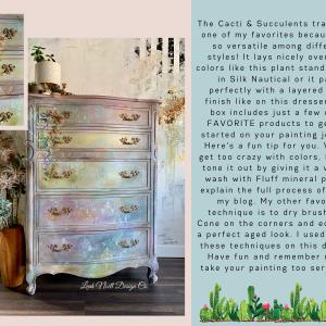 Dixie Belle Brand Ambassador Inspo Box Leah Cacti & Succulent